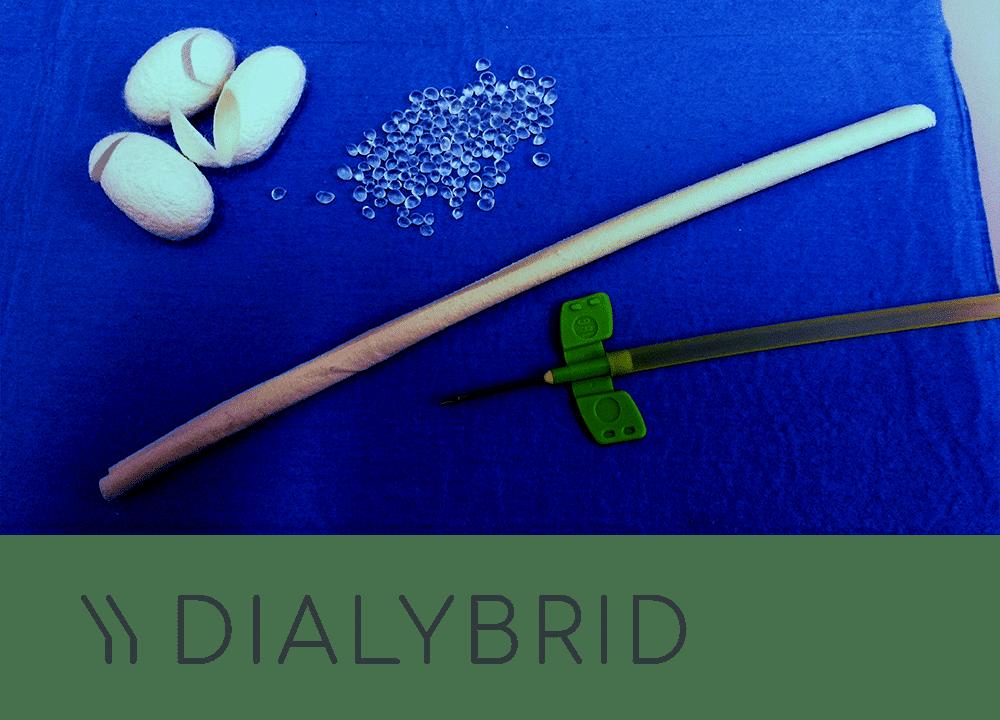 dialybrid